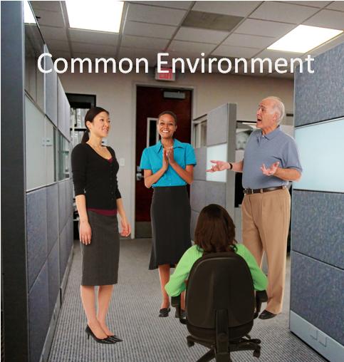 Common Environment